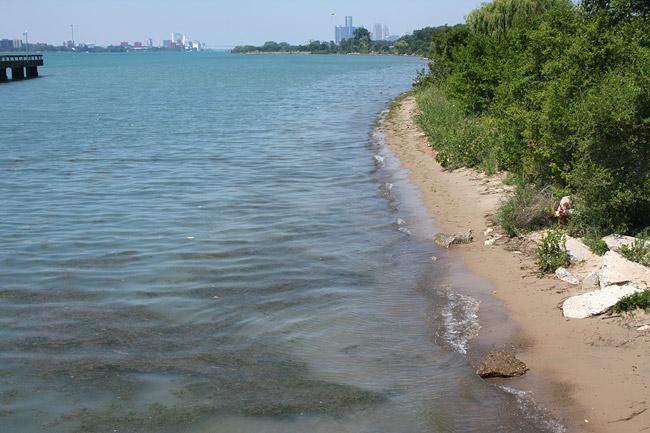 Belle Isle Detroit Beach